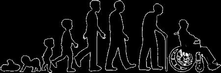 Старение это программа, заложенная в ДНК для удаления старых особей и освобождения места для молодых.